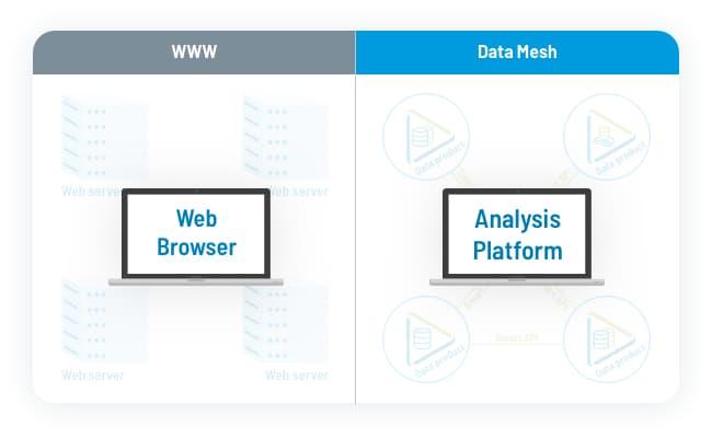 Tag.bio data mesh - analysis platform